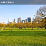 A landscape of green