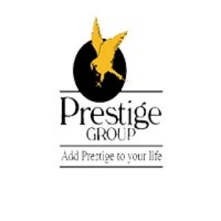 Prestige Constructions