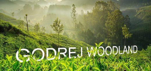 Godrej Woodland